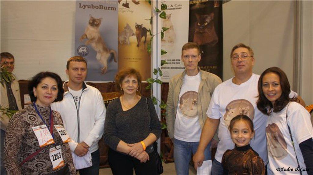 Фоторепортаж с xiii фестиваля кошек экспокот 2011, 24-25 сентября 2011, москва